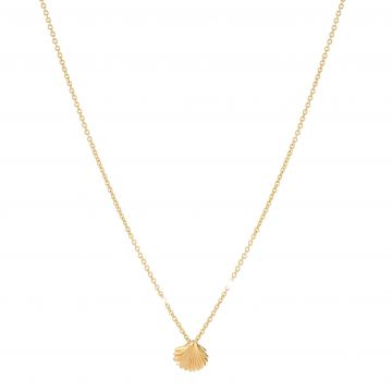 Shell - Luck Necklace